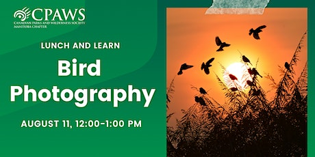 Bird Photography: Photographing the Fall Migration tickets
