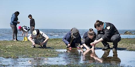 Junior Rangers Beachcombing - Mushroom Reef Marine Sanctuary tickets