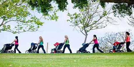 Stroller Walk and Talk  at Mitches Park - June 24th 1:30 PM tickets