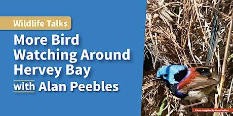 Wildlife Talk - More Bird Watching Around Hervey Bay tickets