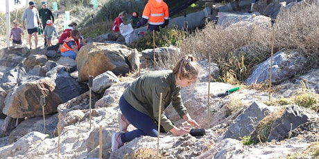 Reclaim the Dunes: Seacliff Beach Tower Community Planting Event! tickets