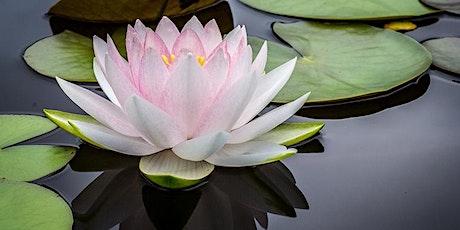 International Day of Yoga with Gurudev Sri Sri Ravi Shankar tickets