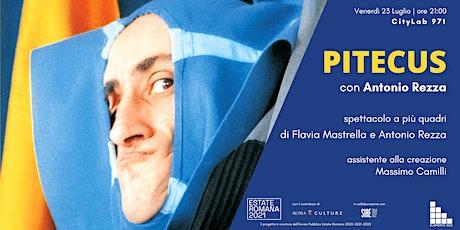 Elements 2021 - PITECUS di Flavia Mastrella e Antonio Rezza biglietti