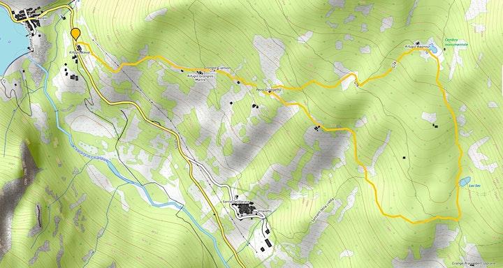 Immagine Escursione guidata nel Bosco dell'Alevé