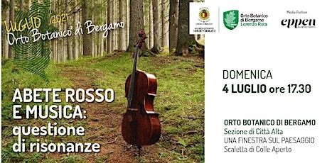 ABETE ROSSO E MUSICA: QUESTIONE DI RISONANZE biglietti
