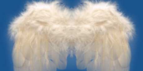 INSEAD BUSINESS ANGELS ALUMNI 45ème REUNION Tickets