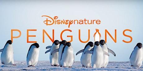 Penguins- ingresso € 3 (gratuito per i minori di 12 anni) biglietti