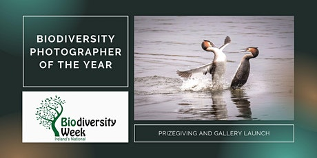Biodiversity Photographer of the Year 2021 Prizegiving event tickets