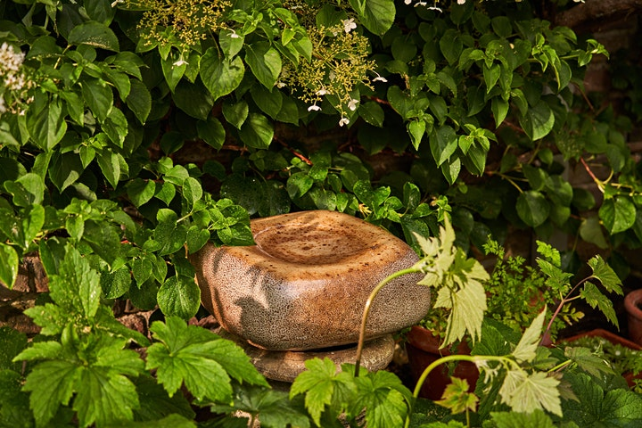 Designing with Plants the Great Dixter Way image