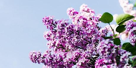 Drawing Club : Fundamentals / Lilac tickets