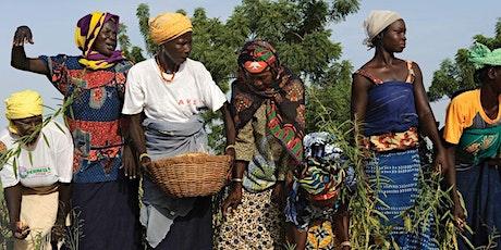 Cinéma du Sud - Act Now! Face the Change - Burkinabè Bounty tickets