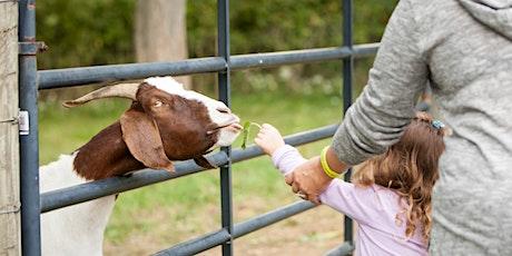 Great Outdoor Weekend: Farm Encounters Walk tickets