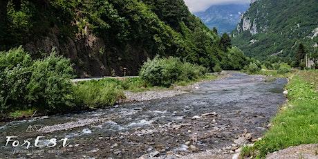 Escursione Family: Tra ruscelli e foreste ai Laghetti di Timau biglietti
