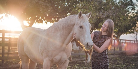 Stepping Out Post-Pandemic: Horse-Guided Learning Workshop tickets
