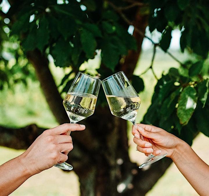 Wine & Yoga at Blomidon Estate Winery image