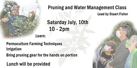 Olive Tree Pruning and Water Management Class @Terra Savia Winery tickets
