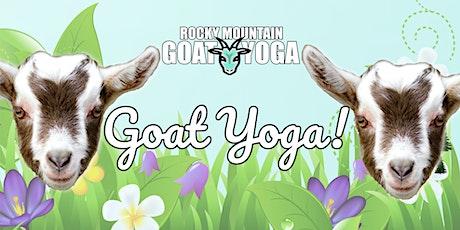Goat Yoga - July 10th (RMGY Studio) tickets