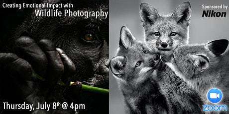 Creating Emotional Impact with Wildlife Photography by Michelle Valberg tickets