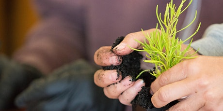 Soil Workshop tickets