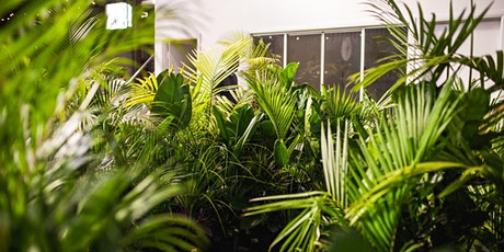 Sydney - End of Year Clearance Sale - 40% off all Plants + Pots tickets
