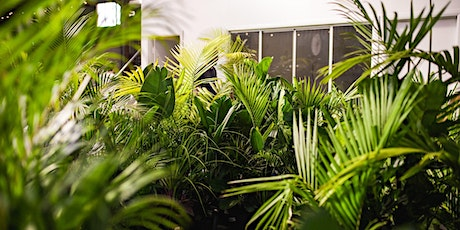 Adelaide - End of Year Clearance Sale - 40% off all Plants + Pots tickets