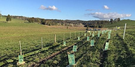 Tree Planting Day - Moriac tickets