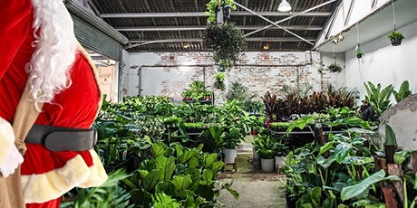 Melbourne  - Huge Indoor Plant Warehouse Sale - Christmas in July tickets