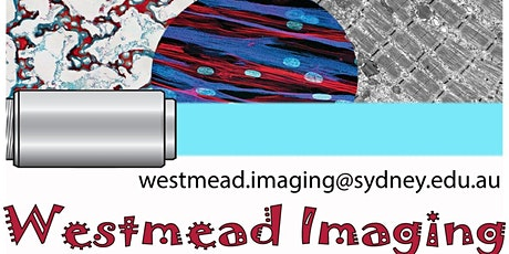 Westmead Imaging User Group Meeting_11-12pm 25 Jun 2021_Rob Hume tickets