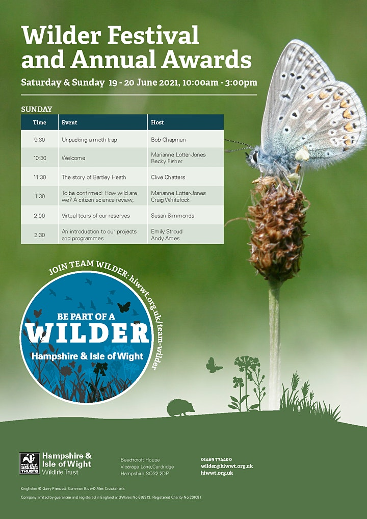 Wilder Festival and Annual Awards image