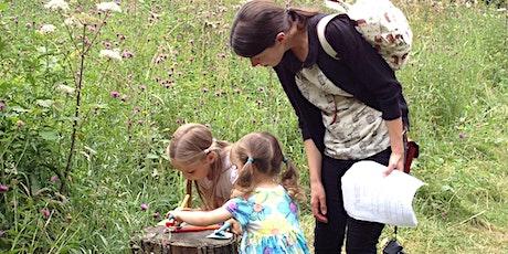 Exploring Pollinators in Elmhurst Park Thur 29 July EAC 2985 tickets