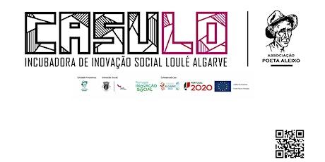 Webinar: Desafios e Oportunidades para um Projeto de Inovação Social entradas