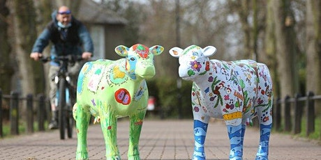 Cows About Cambridge Bike Tour tickets