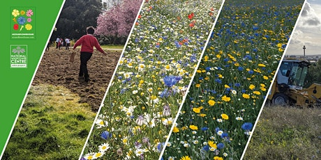 Wildflower Commons & Gardens As Playgrounds for Our Imagination tickets