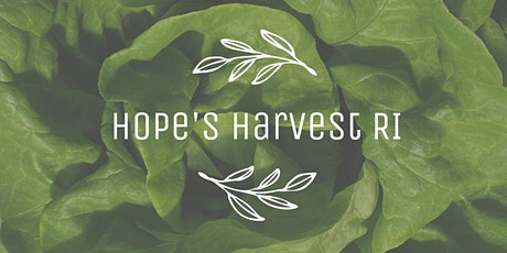 Lettuce Gleaning with Hope's Harvest RI Friday, June 25th 9 - 11AM tickets