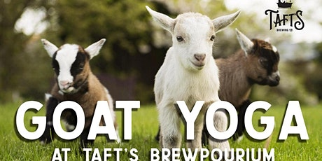 Goat Yoga at Taft's Brewpourium tickets