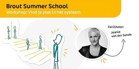 Brout Summer School | Vind je plek in het systeem tickets
