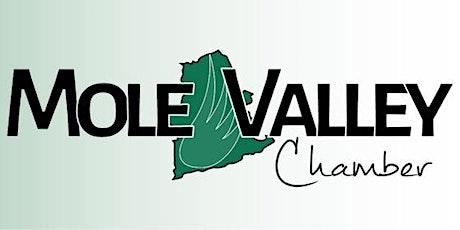 Mole  Valley Chamber Virtual Breakfast tickets