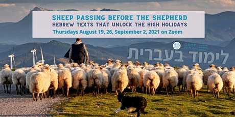 Sheep passing before the Shepherd: Hebrew Texts to Unlock the High Holidays tickets