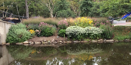 Guided Gardens Tours on the Esplanade tickets