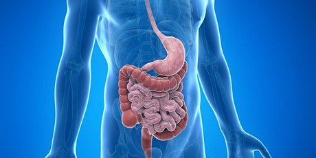 Greenville Study Group - Digestive Health a Holistic System tickets