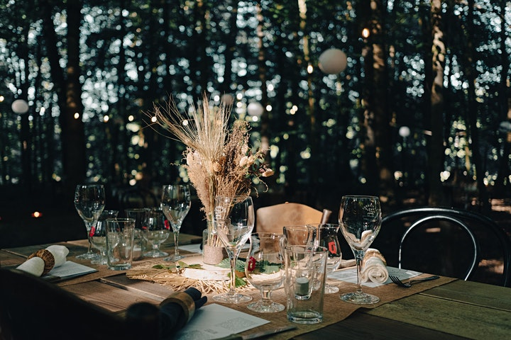 Image pour DINNER in the WOODS x Damien Bouchery