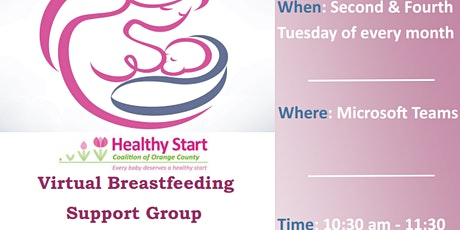 Virtual Breastfeeding Support Group tickets
