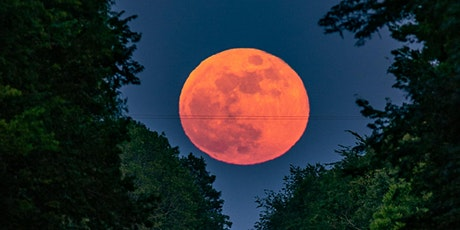 Strawberry Full Moon Workshop - Fill your Soul with Love and Creativity! tickets