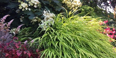 Fabulous Fall Grasses and Perennials tickets