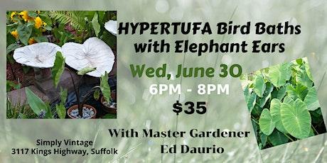 Hypertufa Birdbaths with Elephant ears tickets