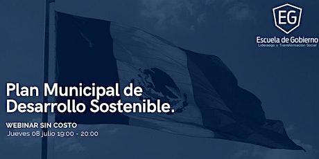 Plan Municipal de Desarrollo sostenible entradas