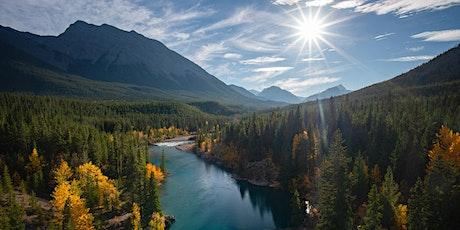 Autumn at Abraham Lake Photography Workshop tickets