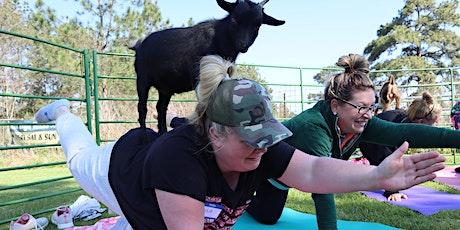 Goat Yoga Texas -  SUPER SUMMER! - Sat, July 24 @ 10am tickets