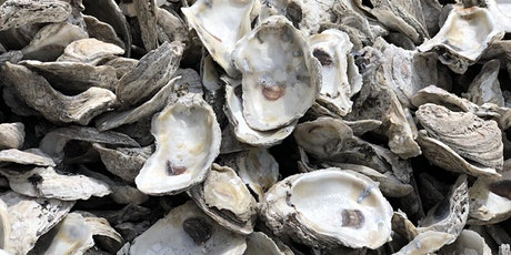 From Tide to Table: The archaeology of oysters tickets