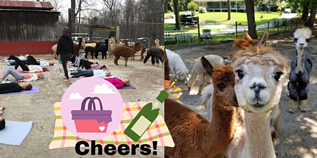 Alpacas, Mimosas and Yoga on the Farm. tickets